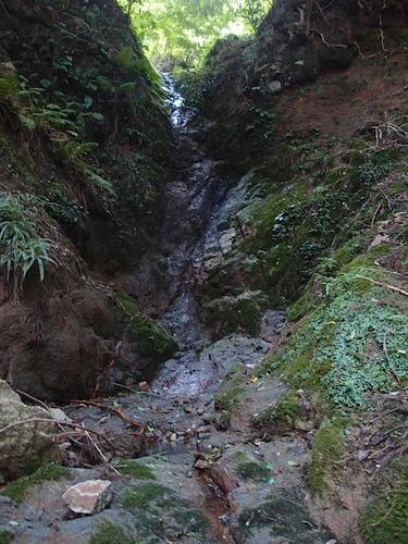 15m大滝
