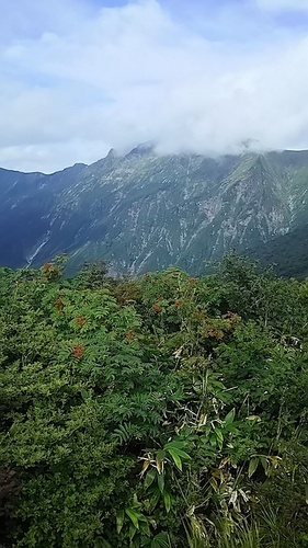 tanigawa01.jpg